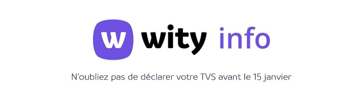 Wity Info - TVS Janv 2021 _ vOTRE EXPERT-COMPTABLE EN LIGNE